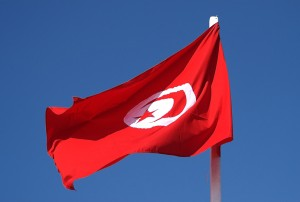 PAC 145 – Tunisia to Bear the Brunt of the Free Trade Model The Asymmetric ALECA Project between the European Union and Tunisia