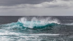 PAC 109 – Oceans, Menaced Public Goods The Banning of Pulse Trawling in Europe in an Institutional Impasse